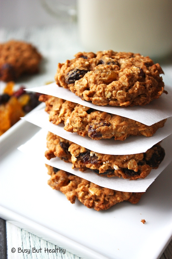 Healthy Outrageous Oatmeal Cookies_1