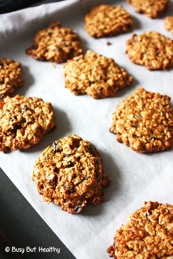Healthy Outrageous Oatmeal Cookies_4